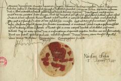 document-nicolae-olarus